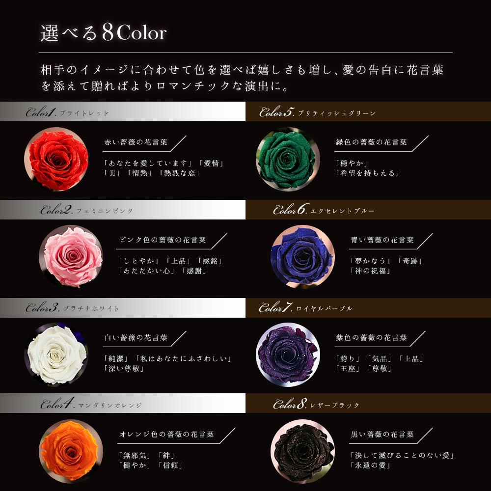 8色の薔薇の花言葉を紹介