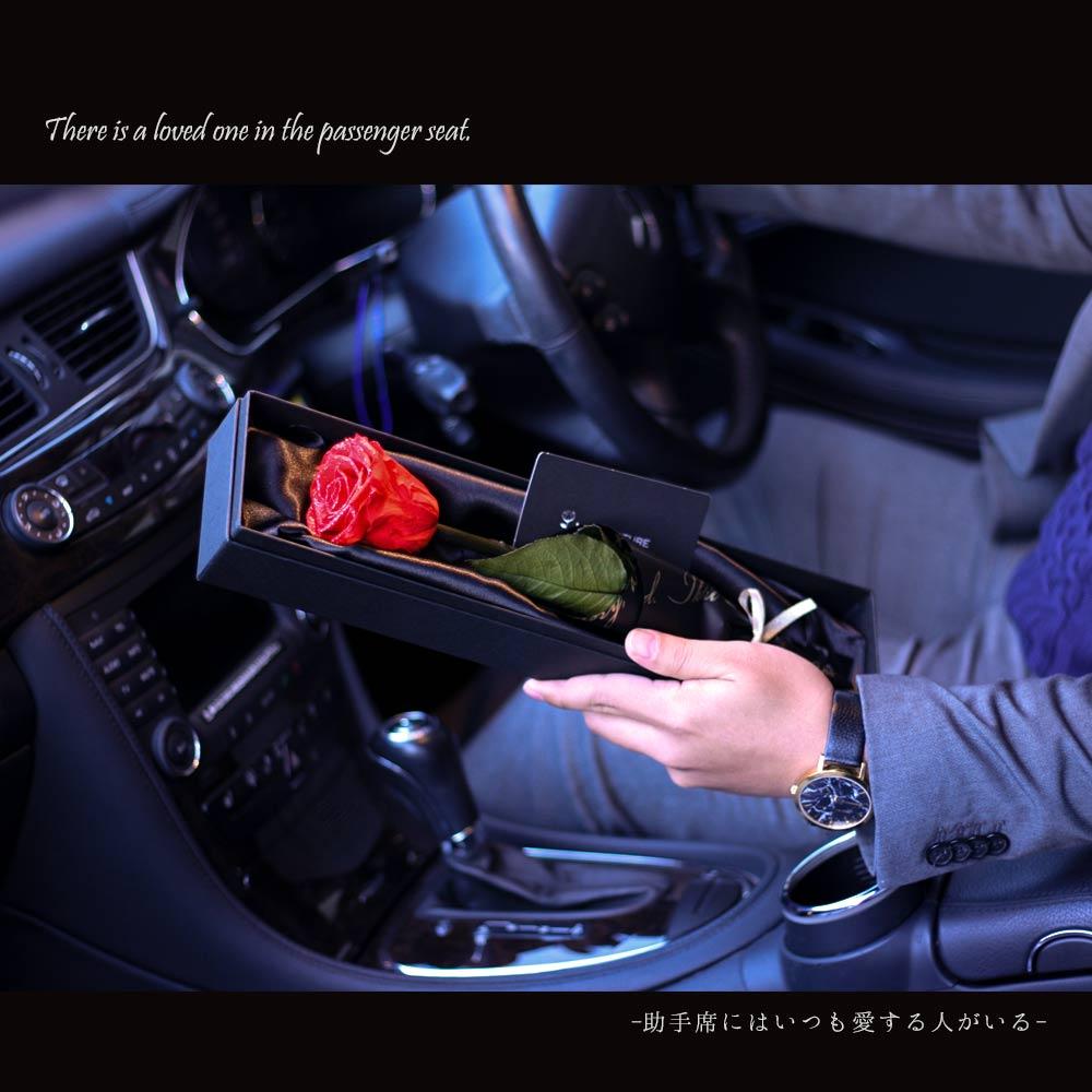 車の中で手渡す最高級の一輪薔薇