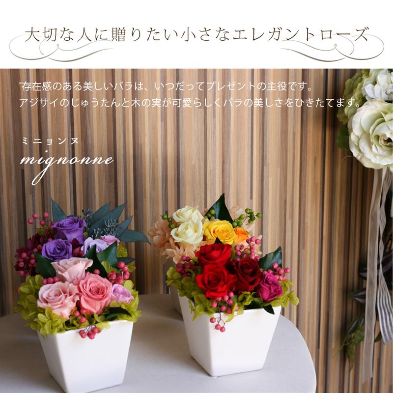 赤 ピンク イエロー パープル 4種類の並ぶお花