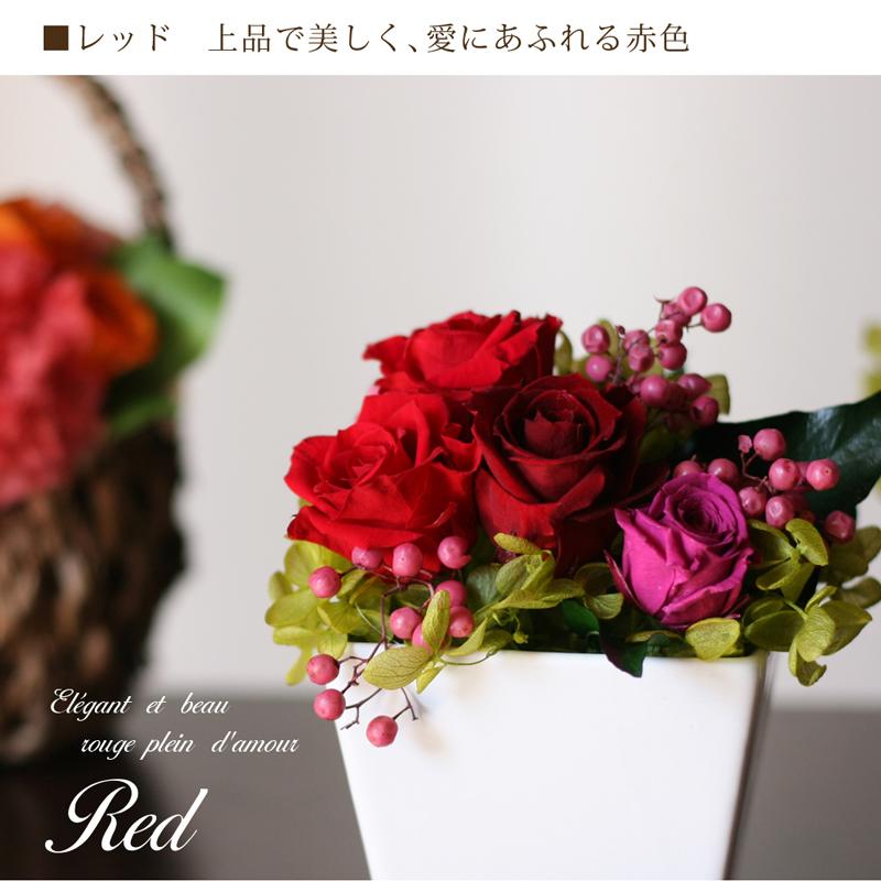 レッドとピンクの薔薇が上品に咲く