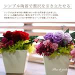 fleur-gradation