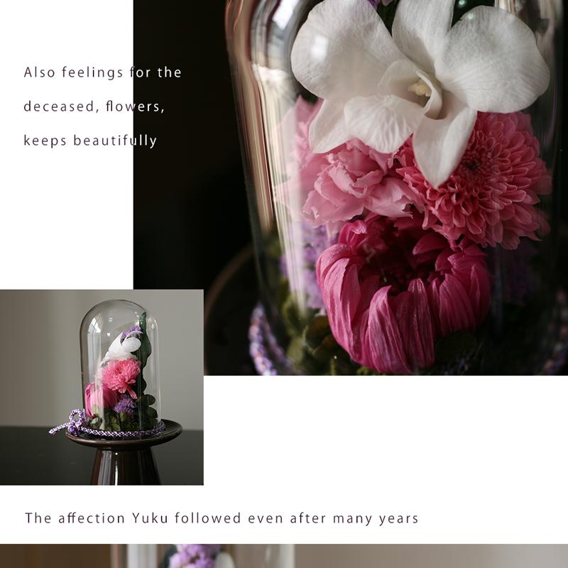 紫苑Sのサイド画像と拡大画像