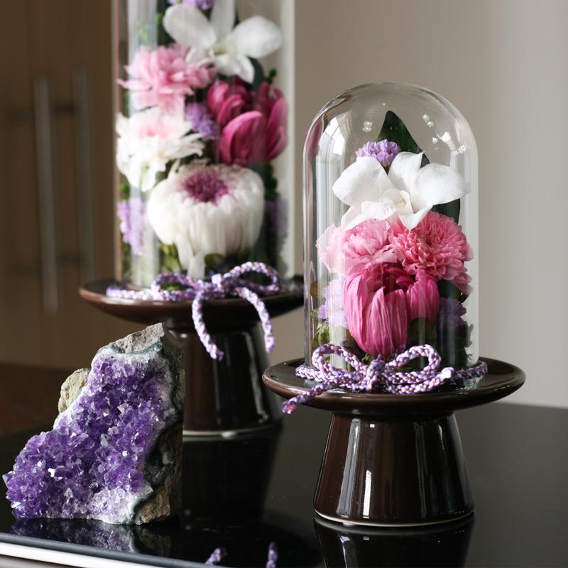 紫苑S、Mサイズが並ぶ
