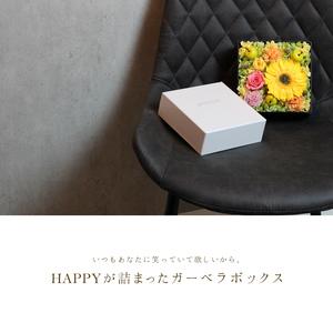 gerbera-box