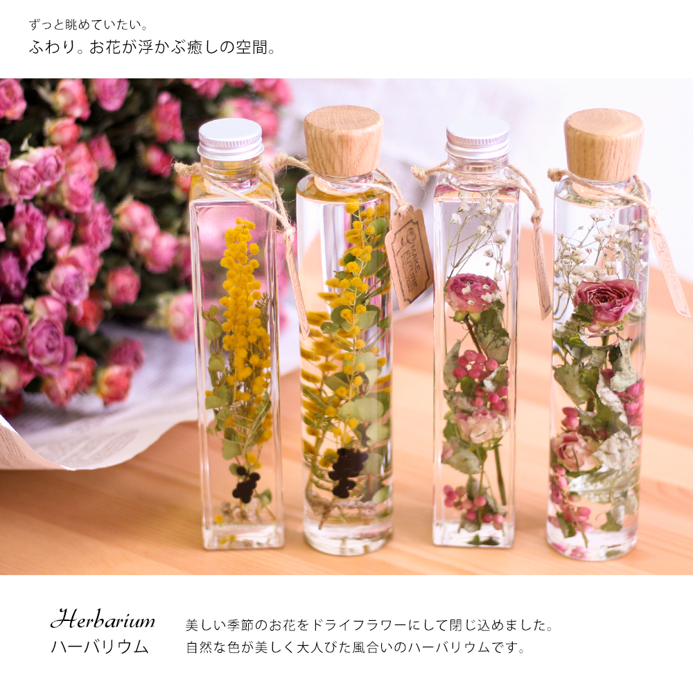 薔薇やミモザのハーバリウム